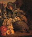 A hedgehog, a cabbage and apples at the foot of a tree - Philipp Sauerland