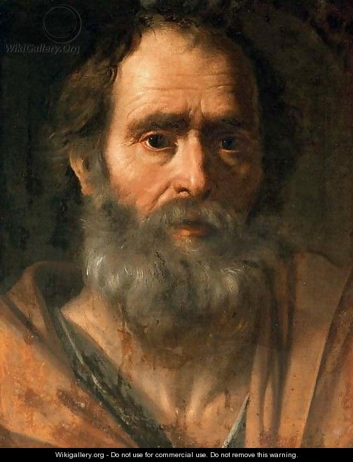 Portrait of a bearded man as an apostle (saint peter) - pier francesco
