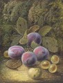 Still life of plums and gooseberries on a mossy bank - Oliver Clare