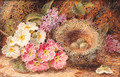 Primroses, Primulas, a Bird's Nest with Eggs, on a mossy Bank - Oliver Clare