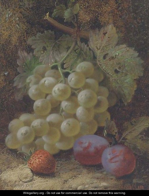 Grapes, plums and a strawberry on a mossy bank - Oliver Clare