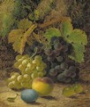 Grapes, gooseberries, a plum and a peach on a mossy bank - Oliver Clare