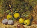 Apples, gooseberries and plums on a mossy bank - Oliver Clare