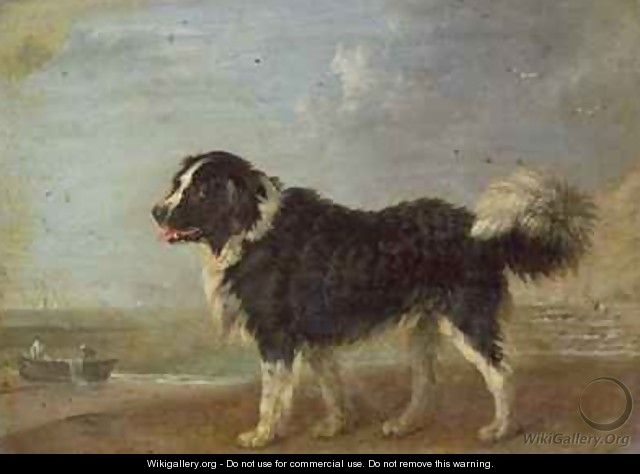 A Newfoundland dog on a seashore - Edmund Bristow