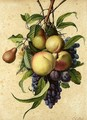 Still Life With Peaches, Pears, Plums And Grapes - Jean-Louis Prevost