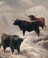 Highland Cattle On The Hills - Charles Jones