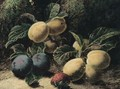 Still Life Of Plums And A Strawberry - Oliver Clare