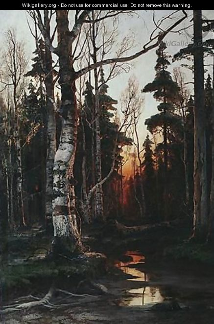 Birch Forest At Sunset - Iulii Iul