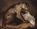 A Leopard Devouring A Sheep - German School