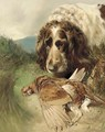 A gundog with a pheasant - William Woodhouse