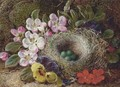 Apple blossom, pansies and a bird's nest with eggs on a mossy bank - Vincent Clare