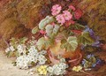 A geranium in a flower pot with primroses - Vincent Clare