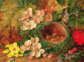 A bird's nest with apple blossom and primulas on a mossy bank - Vincent Clare