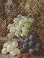 Grapes and raspberries - Vincent Clare