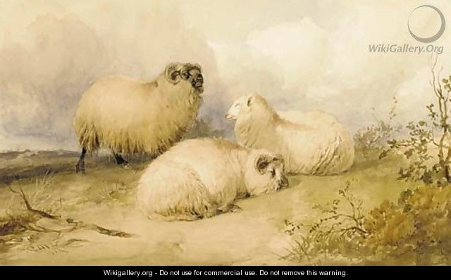 Two rams and a ewe - Thomas Sidney Cooper