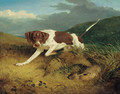 A pointer coming upon a hare - Thomas Woodward