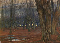 Epping Forest, Walthamstow - Tristram Ellis
