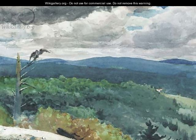 Hilly Landscape - Winslow Homer