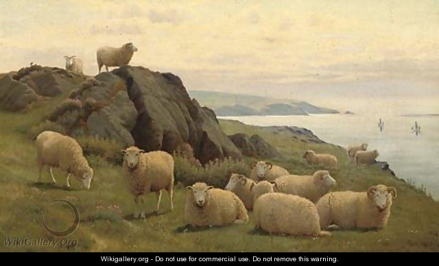 Sheep on a sunlit coast - William Sidney Cooper