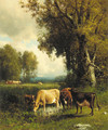 Cows in the Meadow - William M. Hart