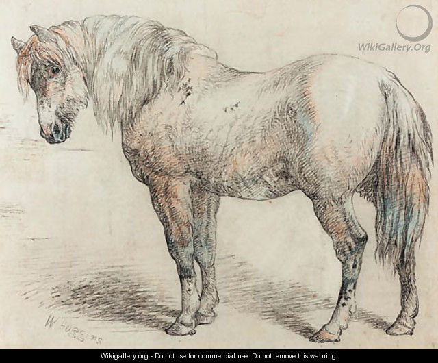 Study of a horse - William Huggins