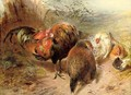 Chickens - William Huggins