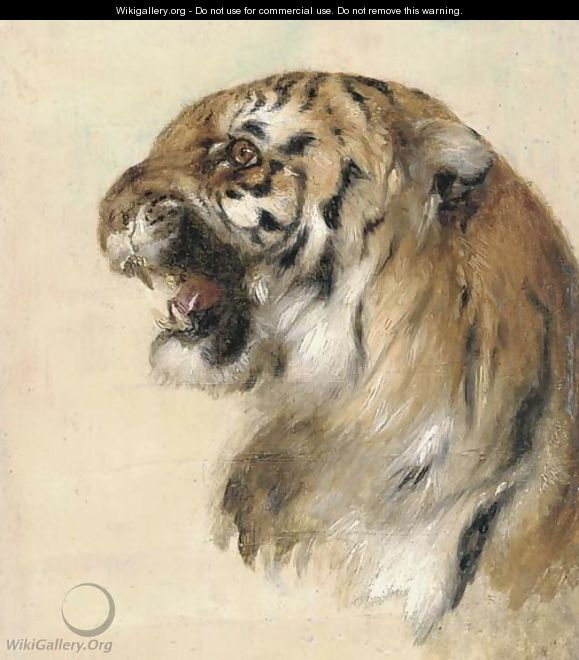 A Bengal tiger 2 - William Huggins