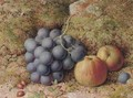 Still life of grapes and an apple on a mossy bank - William Hughes