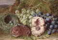 Grapes, a fig, peach and bird's nest on a mossy bank - William Ward