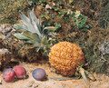 Still life with a pineapple and three plums - William Henry Hunt