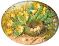 Primroses, hairbells and a bird's nest on a mossy bank - William Cruickshank