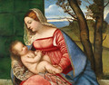 Madonna and Child ca 1510 - Tiziano Vecellio (Titian)
