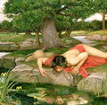 Echo and Narcissus 1903 2 - John William Waterhouse