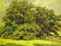 The Mordvinovo Oaks 1891 - Ivan Shishkin