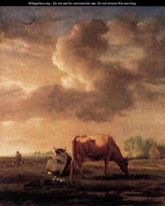 Cows on a Meadow - Adriaen Van De Velde