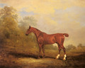 Cecil a favorite Hunter of the Earl of Jersey in a Landscape - John Jnr. Ferneley