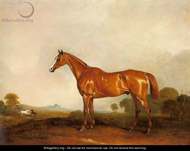 A Chestnut Hunter in a Landscape - John Jnr. Ferneley