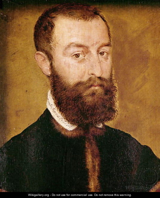 Portrait of a Man with a Beard or Portrait of a Man with Brown Hair - Corneille De Lyon