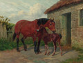 A mare and foal by a stable - Amos Watmough