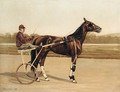 Major Delmar, a Trotter, on a racecourse - Alexander Pope
