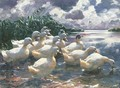Ducks on a Pond 2 - Alexander Max Koester