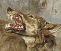 The head of a wolf a study - (after) Frans Snyders