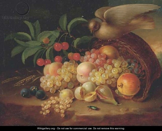 Peaches, cherries, grapes, an apple, plums and other fruit and a dove perched on a wicker basket - (after) George Forster
