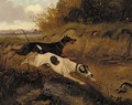 A doberman pinscher and a great dane chasing a rabbit - (after) George Armfield
