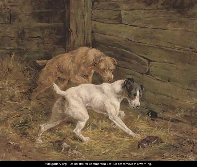 Terriers in the barn - Arthur Alfred Davis