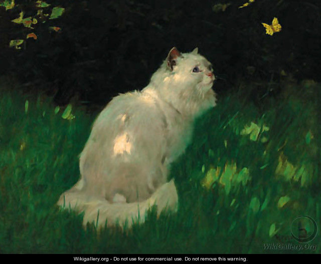 A white Persian cat look at a butterfly - Arthur Heyer