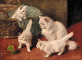 A family of cats at play - Arthur Heyer