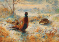 Frost at Sunrise Pheasant amongst bracken - Archibald Thorburn