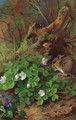 Woodmouse and wood sorrel - Archibald Thorburn