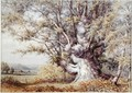 Squirrels in an Ancient Oak Tree - John Skinner Clifton